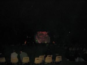 12Musiques au Jardin Arquebuse2 050713