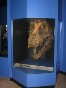 Inauguration Muséum Dijon 280613 (44)