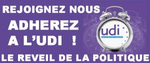 Bannière UDI 2013