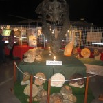 Exposition Grande Orangerie Dijon 300913 (1)
