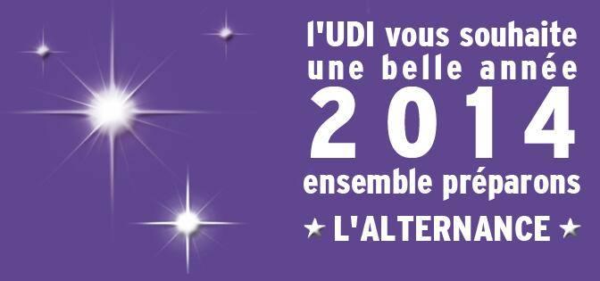 Bannière Voeux UDI 2014