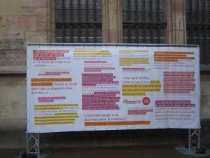 Festival Clameurs Dijon 130614 (7)