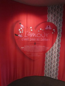 Exposition Amour pas si bête Muséum Dijon 050714 (1)