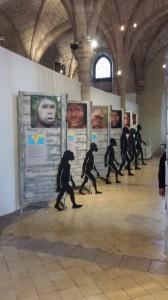 Exposition Sur Les Traces de l'homme Musée archéologique Dijon 190914 (4)