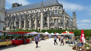 1er Printemps de l'écologie Bourges 060615 (3)