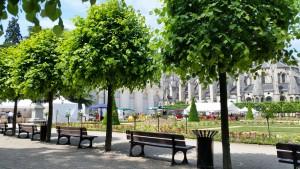 1er Printemps de l'écologie Bourges 060615 (5)