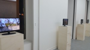 Vernissage exposition L'artiste dans la ville La Box ENSAB 271015 (9)
