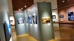 Exposition Photographes de nature Muséum d'histoire naturelle Bourges 281215 (4)
