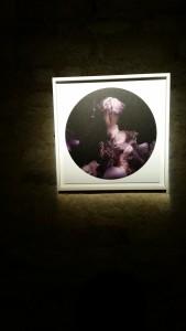 Exposition A mi ombre JYMoirin Château d'eau 020216 (5)