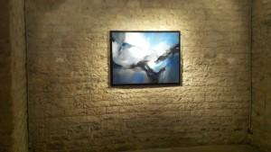 Exposition Isabelle Sarian Château d'eau 260316 (2)