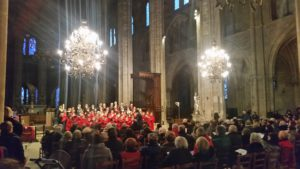 concert-de-chants-de-noel-cathedrale-111216-3