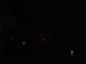 Lancé de Lanternes Voeux Marais 240617 (3)