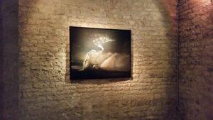 Exposition JCQuillin Chateau deau 090319 (2)