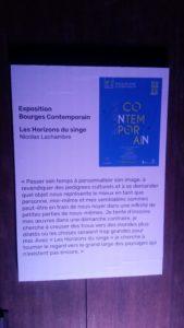 Les Horizons du Singe - Palais JCoeur 270619 (1)
