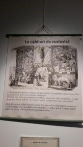Exposition Nouvelles curiosités Médiathèque 280919 (17)