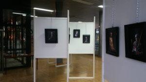 Exposition 20 ans Les Amis de Jacques Coeur Mairie 011119 (7)